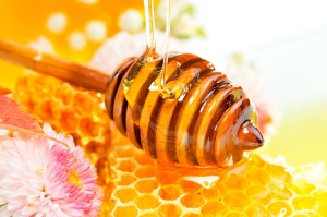 FreeGreatPicture.com-3011-pictures-of-liquid-honey-and-the-honeycomb