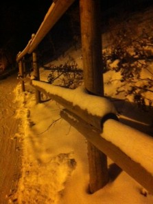 Snowy Fenceposts