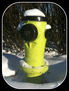 Fire Hydrant 1A
